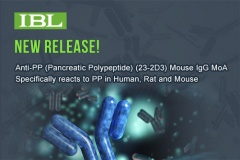 【IBL】Anti-PP (Pancreatic Polypeptide) (23-2D3) Mouse IgG MoAb