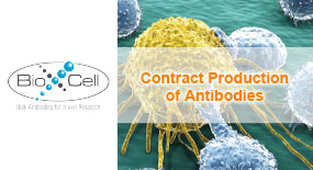 Contract Production of Antibodies